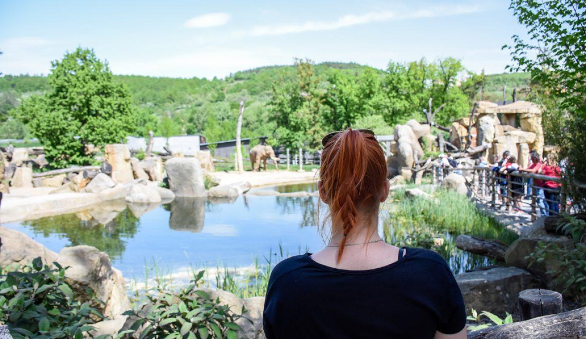 Živalski vrt v Pragi