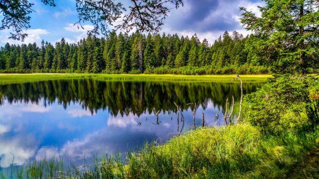 13 idej kaj početi na Rogli: Črno jezero