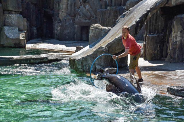 4 days in Prague: prague zoo