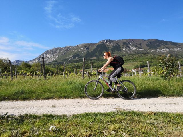 Short guide for beautiful Vipava valley: cycling