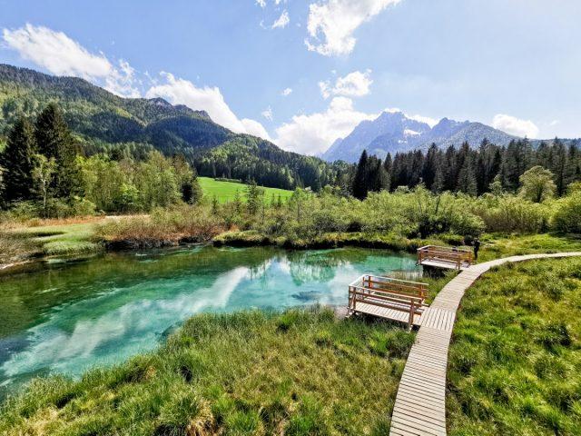 Enodnevni izlet v Kranjsko Goro: zelenci