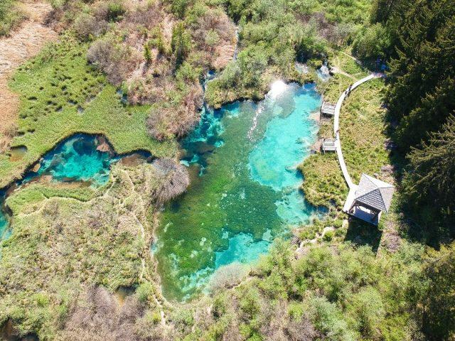 16 reasons to visit Kranjska Gora: zelenci