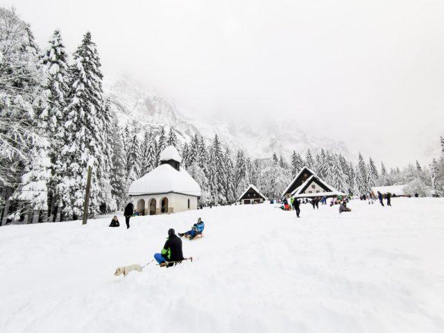 Zimska idila in sankanje v dolini Tamar: dolina tamar