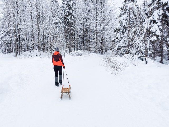 Zimska idila in sankanje v dolini Tamar